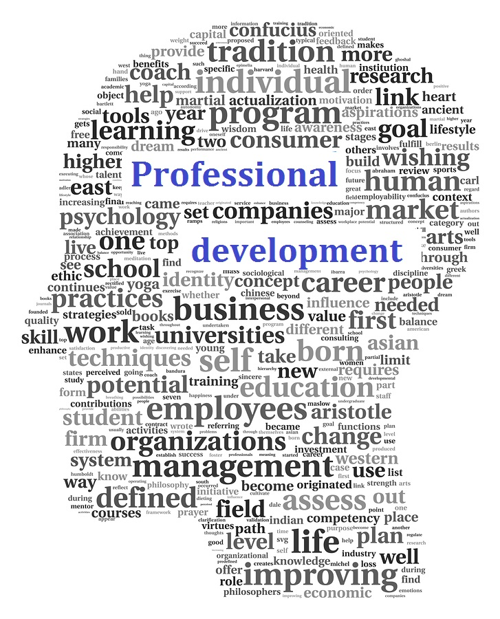 definition of personal and professional development commerce essay Browse personal development courses and specializations personal development specializations and courses teach strategies and frameworks for personal growth, goal setting, and self improvement.