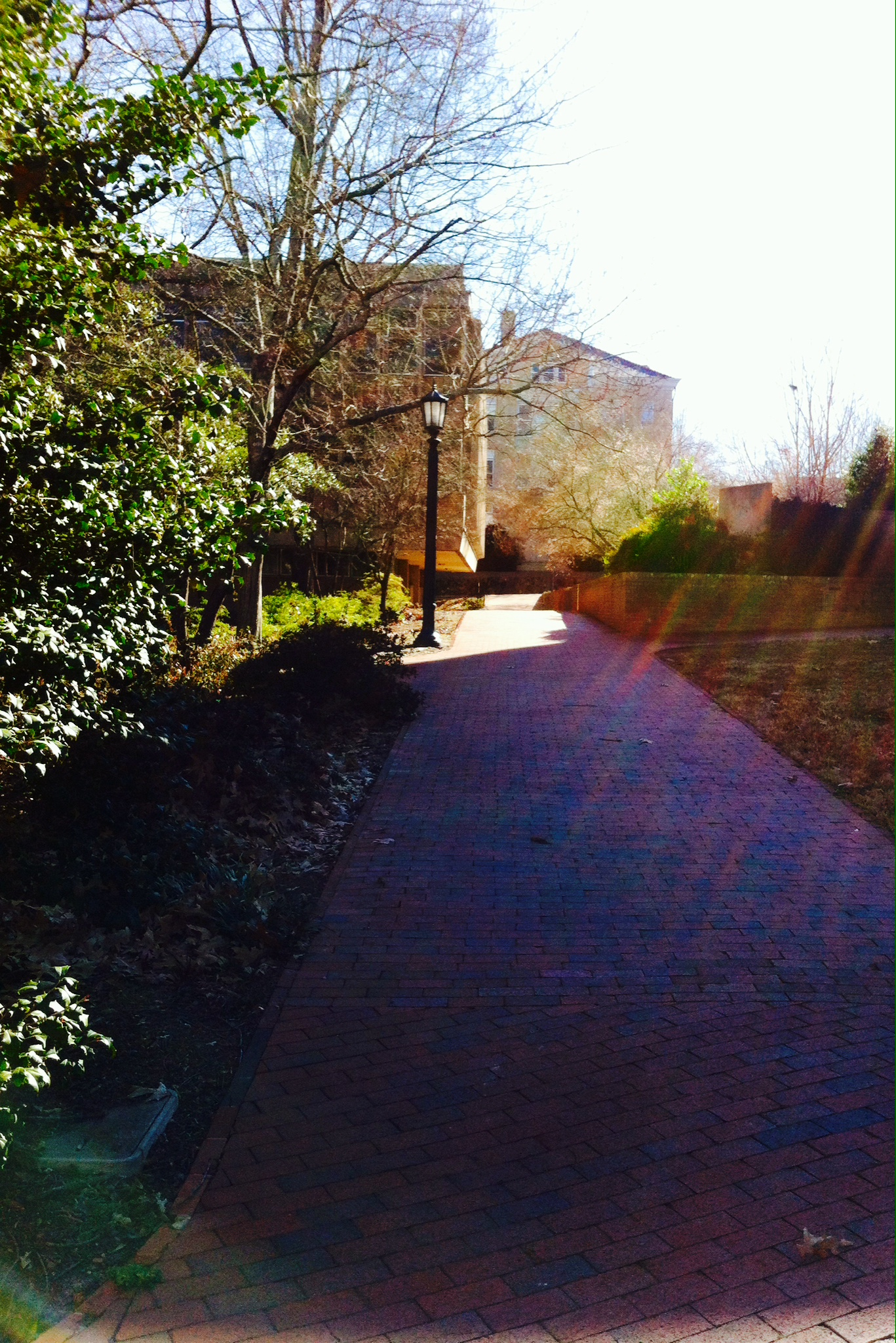 Path on campus