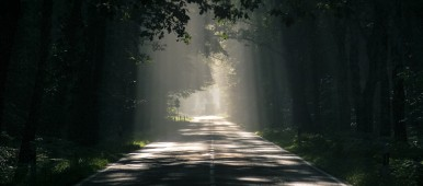 A dark road surrounded by trees on either side.