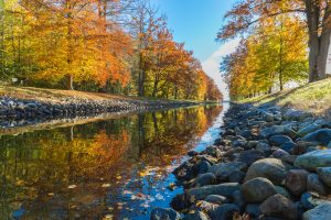 Rocky river bed surrounded by fall leaves